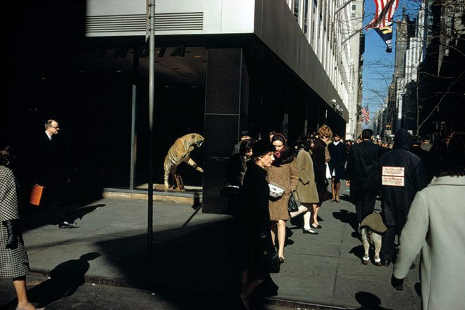 Joel Meyerowitz captured great images like this by working street corners, letting the opportunities come to him. Copyright: Joel Meyerowitz