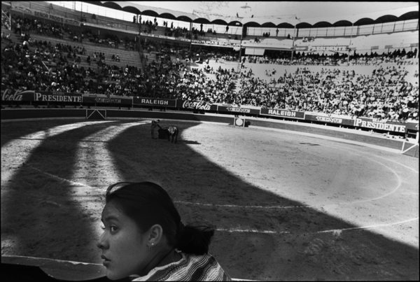 bullfight 2 copy