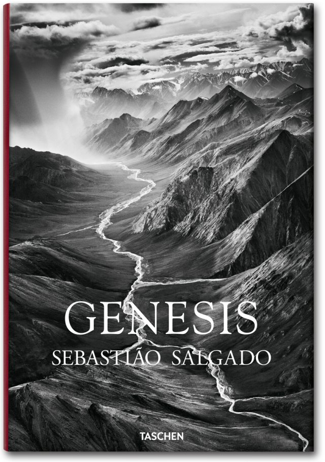 cover_fo_salgado_genesis_trade_gb_1307081418_id_618549