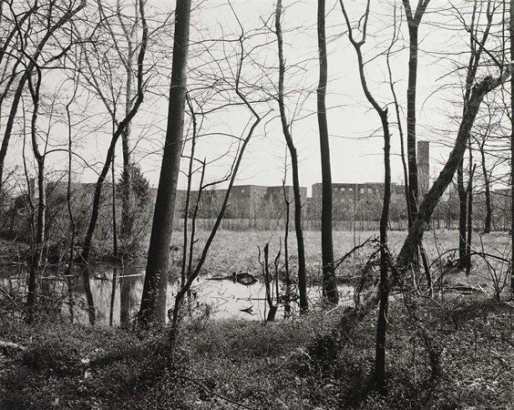 """John Gossage's 'The Pond'"" (1986)"