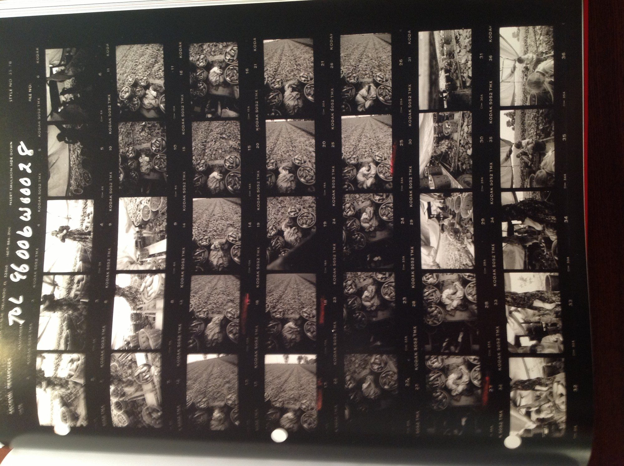"Contact sheet from Larry Towell, ""Untitled"", Ontario, Canada, 1996. © Larry Towell / Magnum Photos"