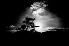 seoul eric kim photography-17097728