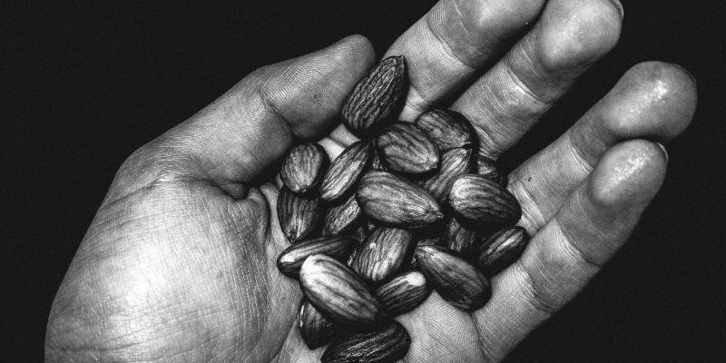 eric kim almonds