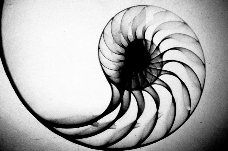 eric kim photography black and white hanoi-0009910 spiral fibonacci
