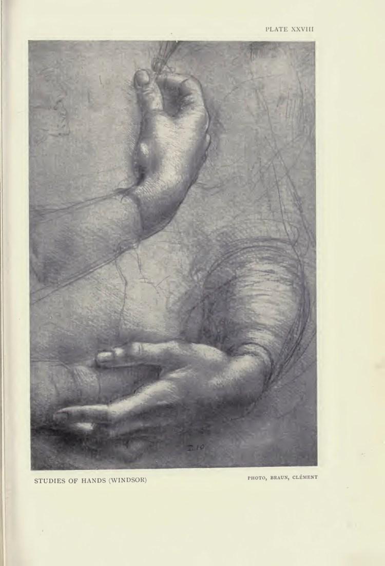 leonardo hands