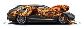 porsche vs cheetah4