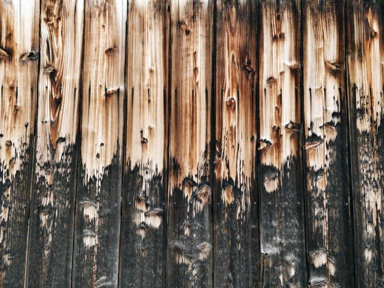 Kyoto wood. Processed with VSCO with a6 preset