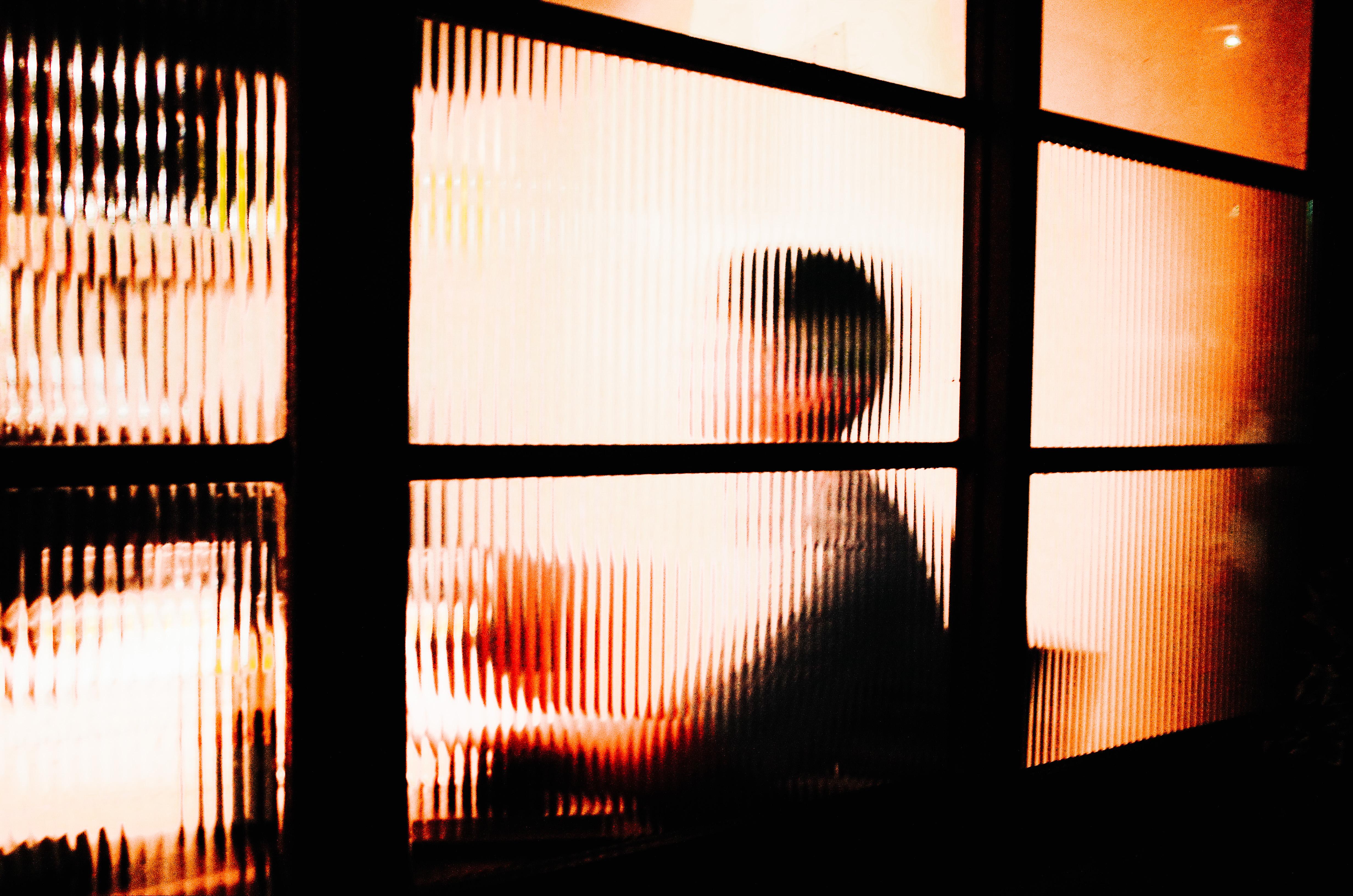 Kyoto Silhouette, 2017.