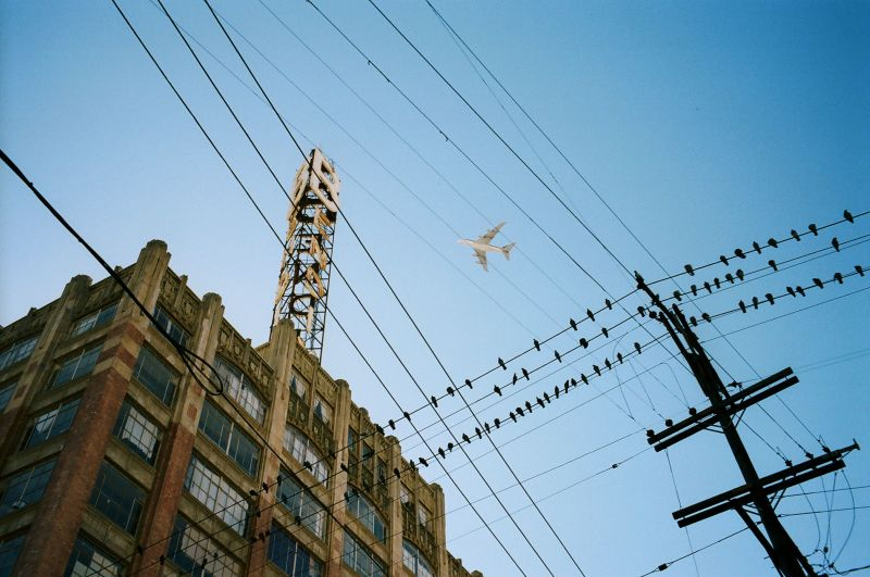 Airplane and telephone wires. Downtown LA, 2013