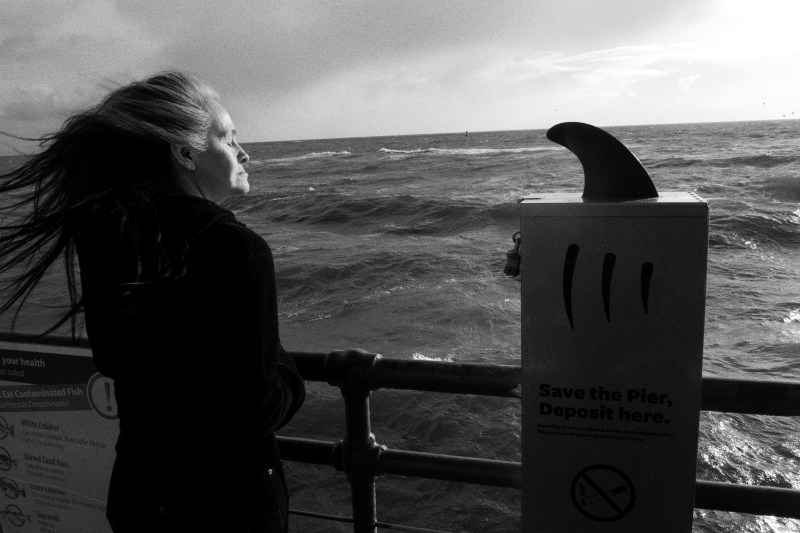 Woman at Santa Monica pier, waving hair, and shark.