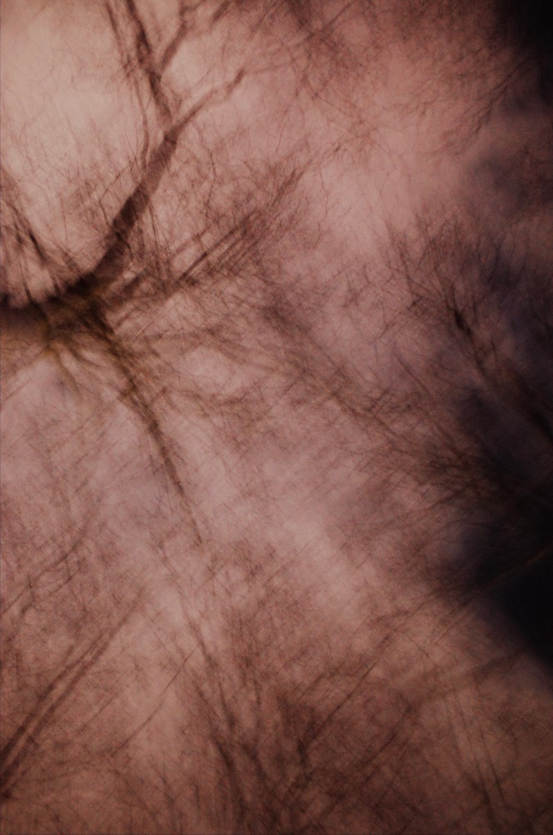 Blurry trees at night, shot in program mode, ISO 1600. London, 2018