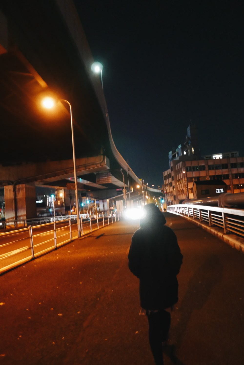Cindy walking Osaka night