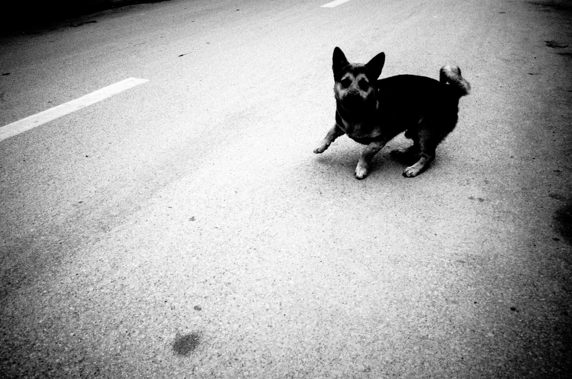 eric kim photography black and white street-0011798