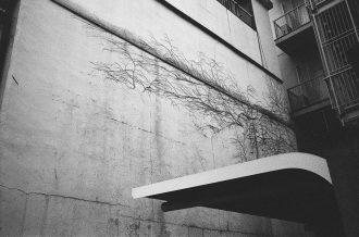 eric kim photography black and white tri x 1600 leica mp 35mm film-1603