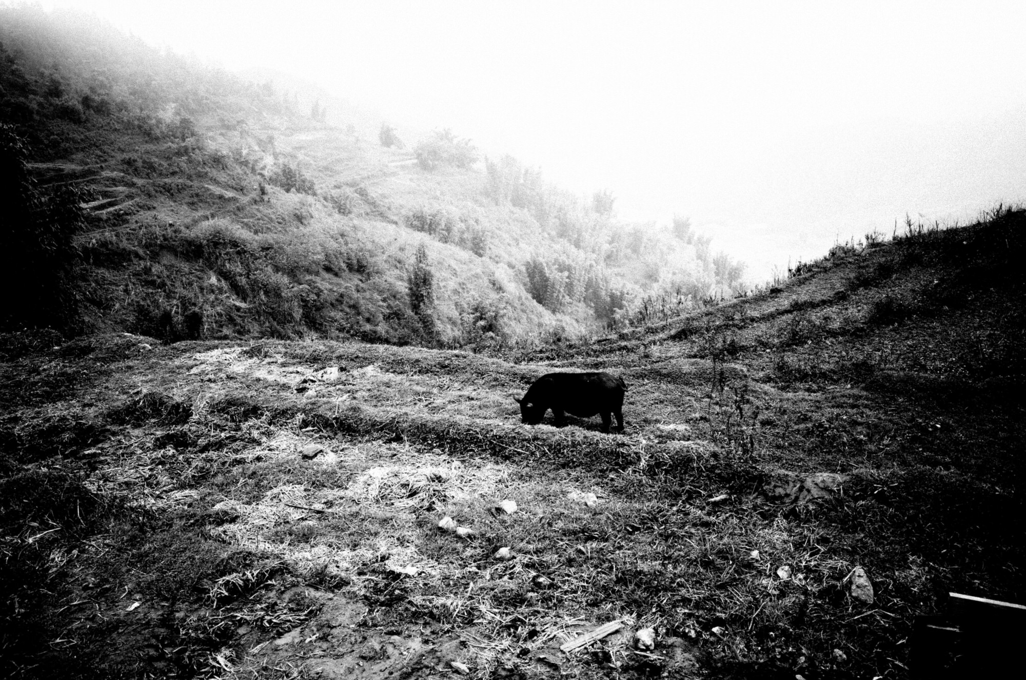 eric kim photography sapa-2017-0003940