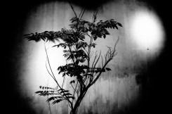 eric kim street photography hanoi-0001745