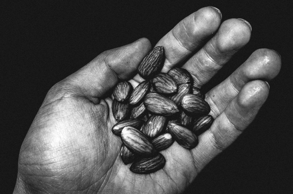 Hands of almonds