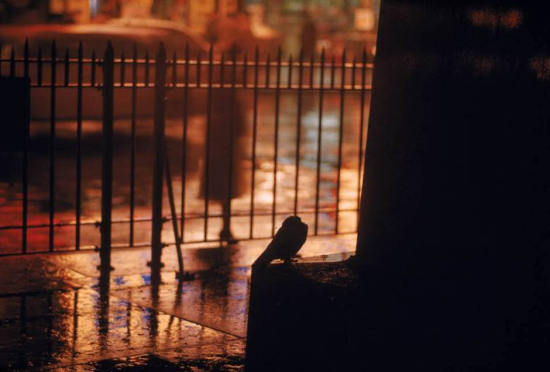 Ernst Haas Color Street Photography12
