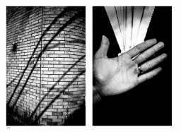 Diptych monochrome