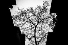 eric kim black and white photography hanoi-0010454
