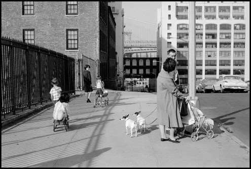 USA. New York City. 1963. Brooklyn neighborhood with the bridges in the background.
