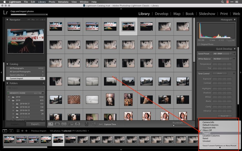 lightroom select flagged photos