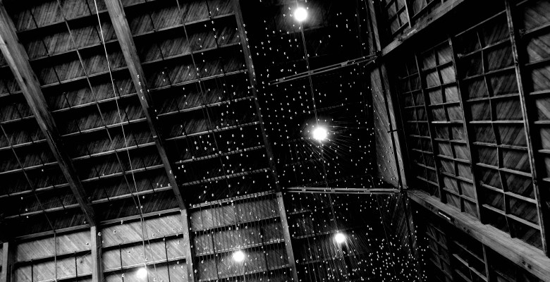Spruce goose hangar, looking up with RICOH GR III and 21mm lens.