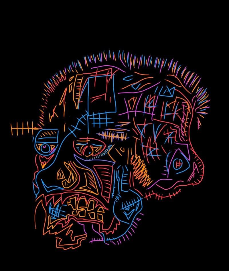 face skull