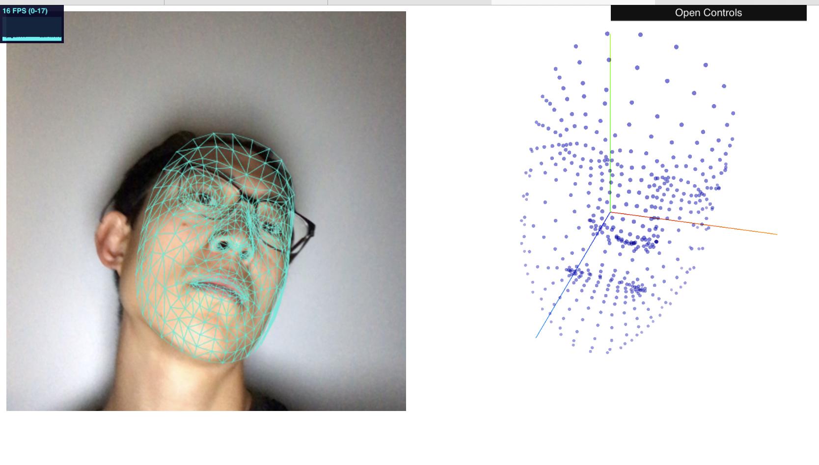 Face mesh eric