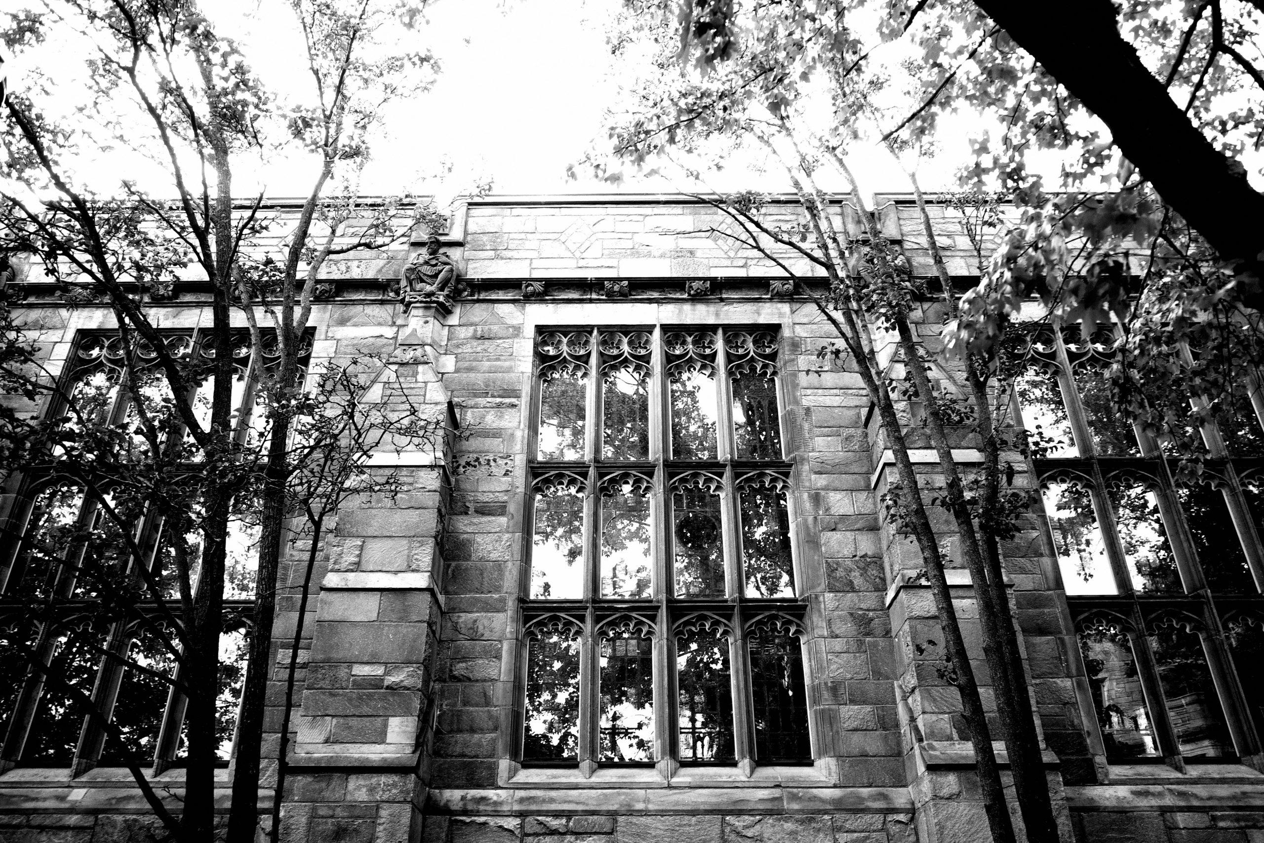 Yale light black and white