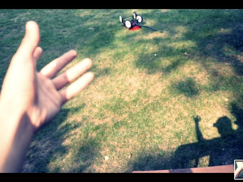 hand selfie grass