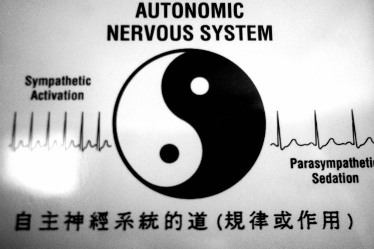 yin yang health