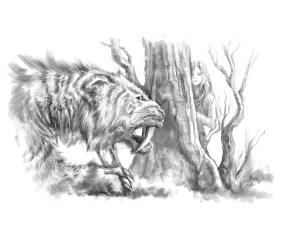 chapter-6-illustration-smilodon