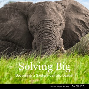 Solving Big is the first of four e-essays on systems-centric leadership