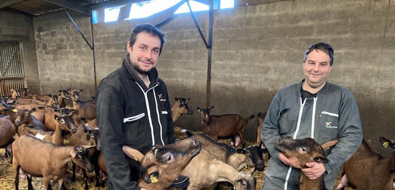 Découvrez un duo d'éleveurs de chevreaux en Maine-et-Loire
