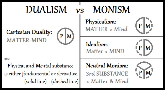 Dualism vs Monism
