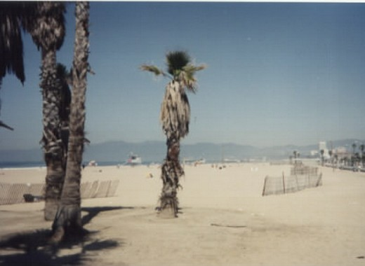 Los Angeles (Venice Beach), USA (1990)