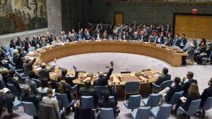 United Nations Vote on Israeli Settlements