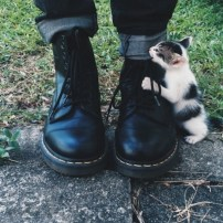 qrbmk6-l-610x610-shoes-boots-combatboots-tumblr-tumblrgirl-tumblrclothes-hipster-grunge-grungeshoes-drmartenboots-kitty-cats-jeans-cute-clothes-trendy
