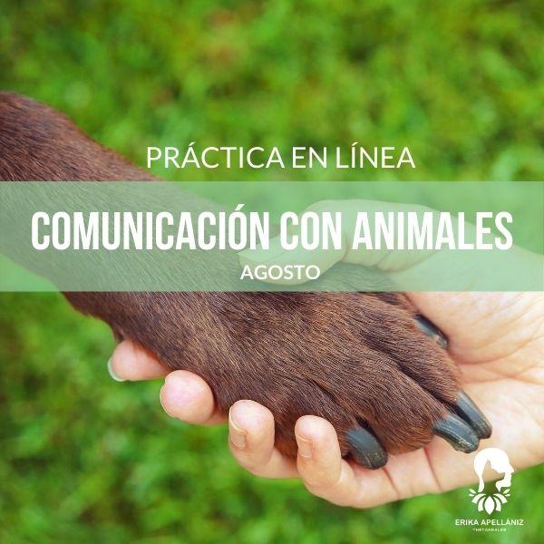 Práctica Comunicación con Animales_Agosto