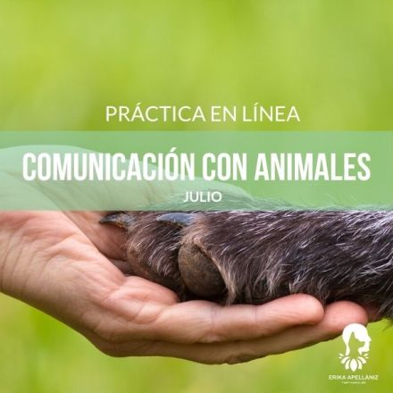 Inscríbete a la Práctica de Comunicación con Animales 30 de julio 2020Inscríbete a la Práctica de Comunicación con Animales de julio