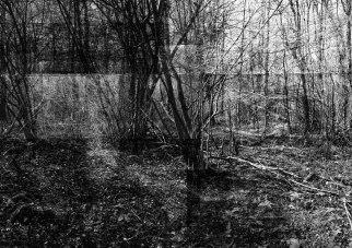 ©Bertrand Flachot