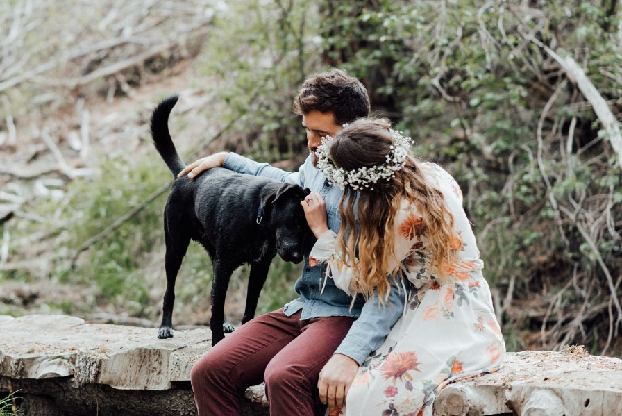 Engagement photos with a dog