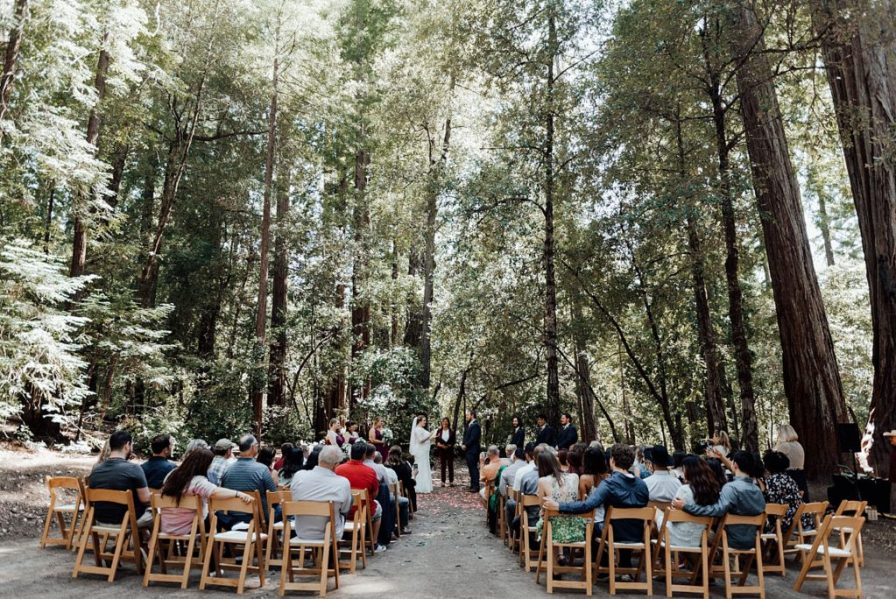 Big Basin Redwoods wedding in California