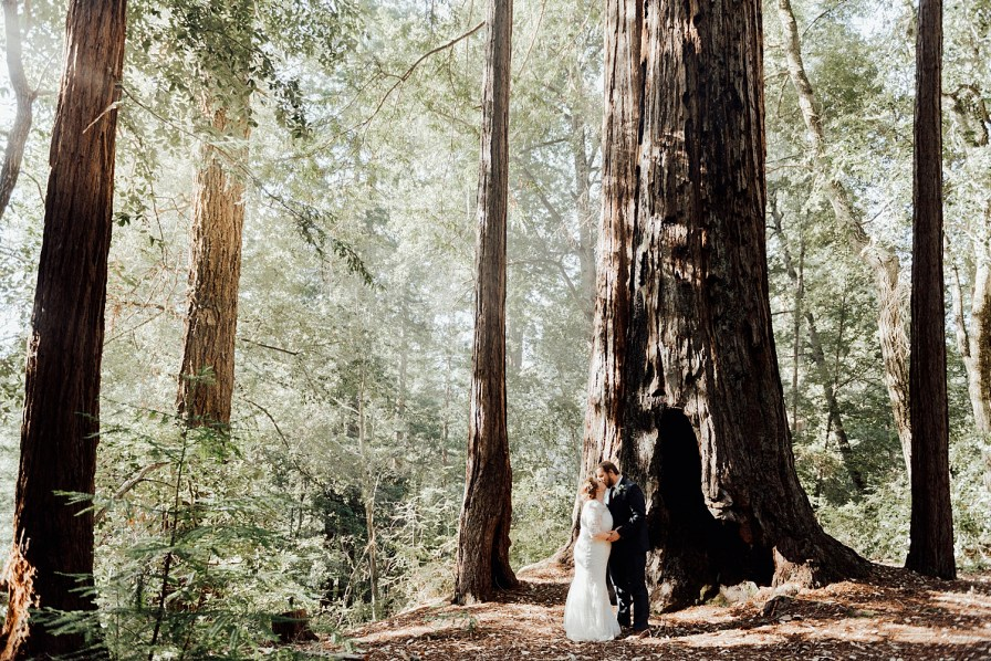 Big Basin Redwoods wedding