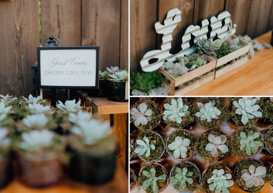 Guest favor ideas, wedding succulents, boho backyard wedding