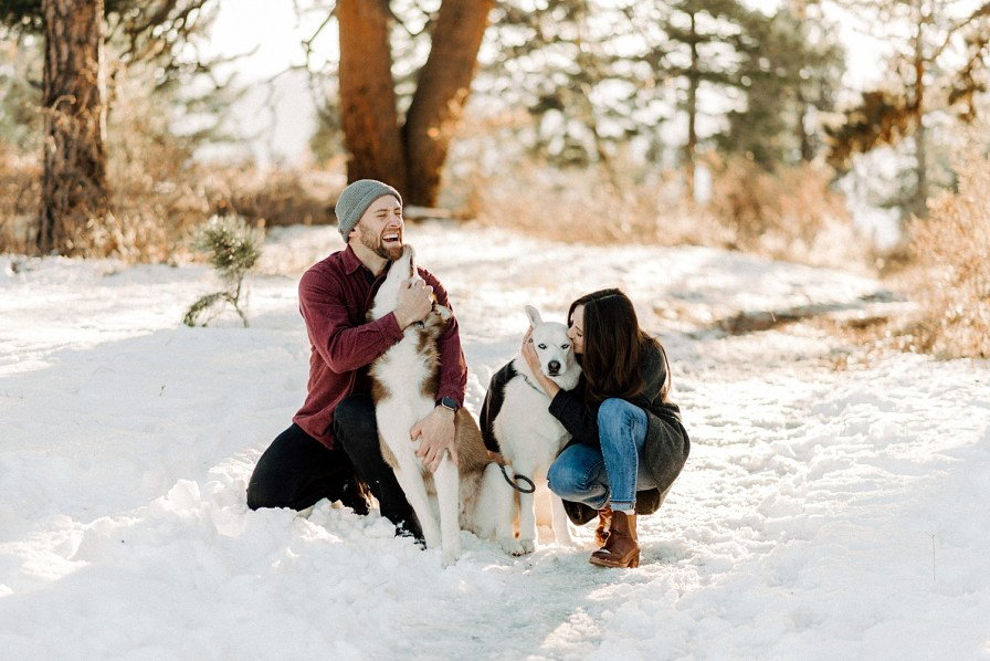 anniversary photos with dogs