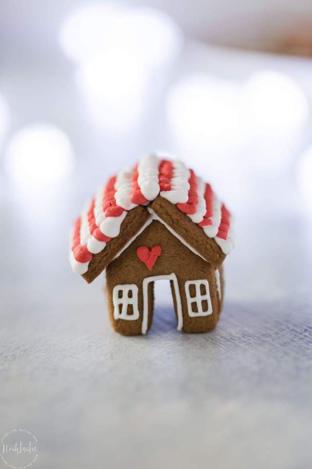 3.-Gluten-Free-Gingerbread-House-Mug-Topper-Cookies-1-of-1