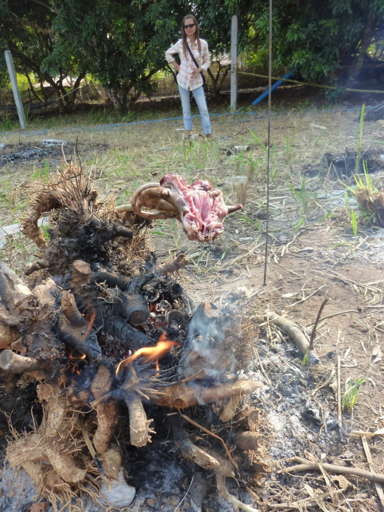 barbecued rat, thaton