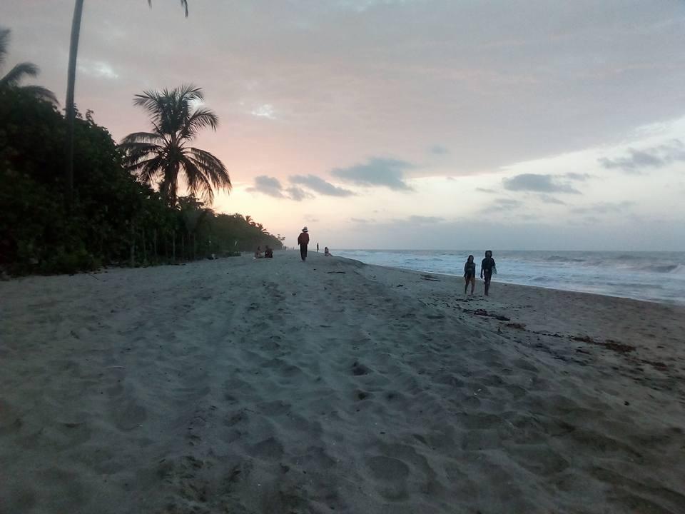 Palomino Beach PIC: RM